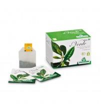 Tè Verde filtri