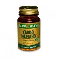 Body Spring Cardo Mariano per il benessere epatico
