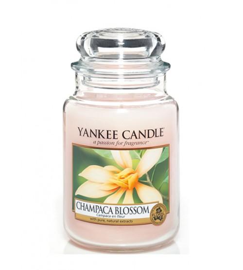 Yankee Candle Champaca Blossom Giara Grande