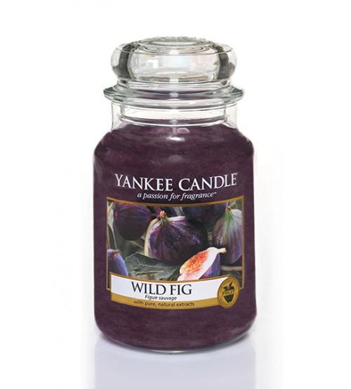 Yankee Candle Wild Fig Giara Grande