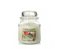 Yankee Candle Lemongrass Ginger Giara Media