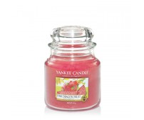 Yankee Candle Pink Dragon Fruit Giara Media