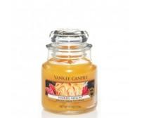 Yankee Candle Waikiki Melon Giara Piccola