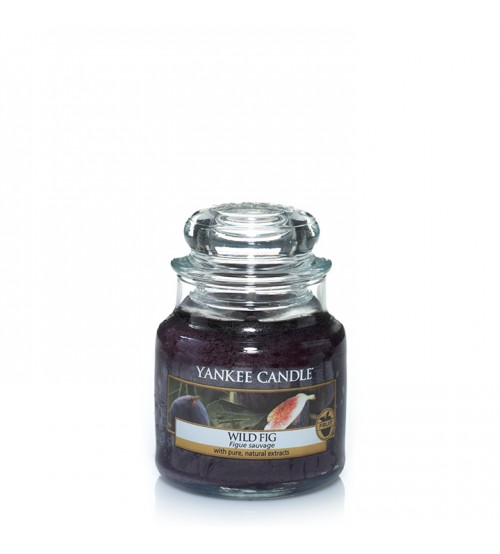 Yankee Candle Wild Fig Giara Piccola