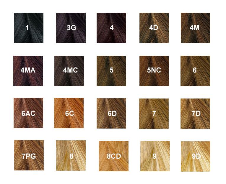Nuances Phyto Color